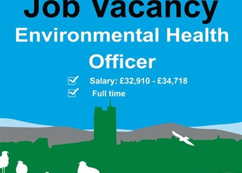 RICHMONDSHIRE DISTRICT COUNCIL INFORMATION ON A JOB VACANCY
